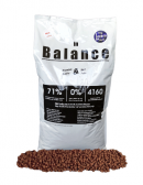 Dog Lovers Gold in Balance 13 kg.